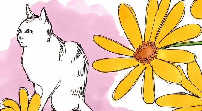 Le jardin des chats, inspiration japon