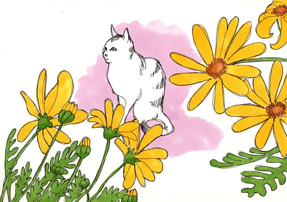 fleur-chat-dessin