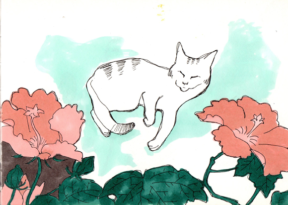 flower-cat-dessin