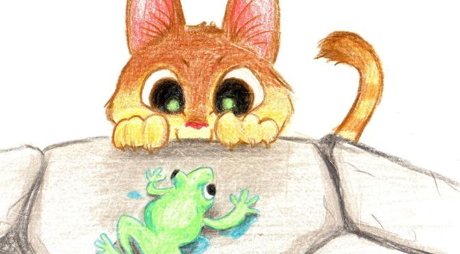 histoire d'un chat et d'une grenouille